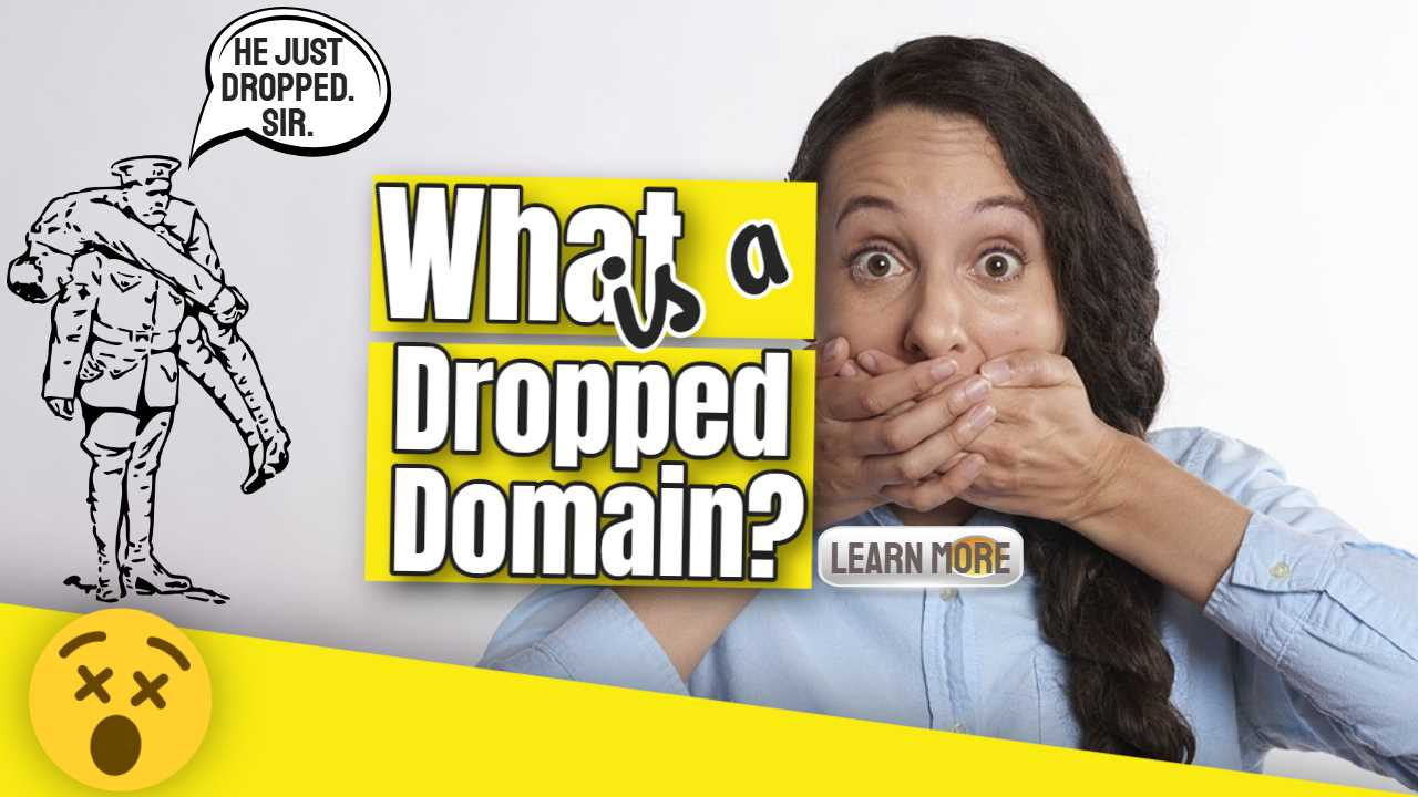 "Featured image text: ""What is a Dropped Domain?""."